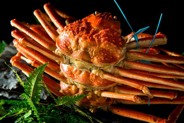 「加能蟹」は青タグブランド