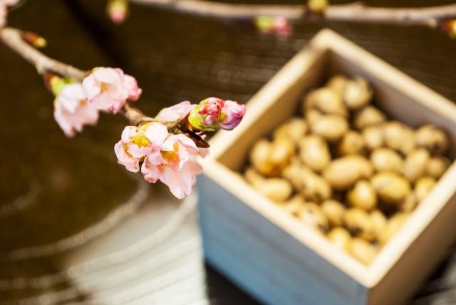 美の饗宴「芸妓さんの豆まき」